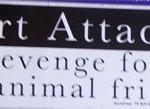Bumper Sticker: Heart Attacks .. . God's revenge for eating His animal friends
