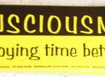 Bumper Sticker: Consciousness : That Annoying Time Between Naps